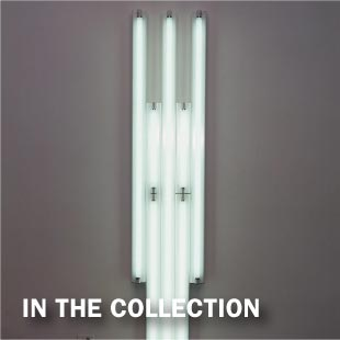 Dan Flavin Collection