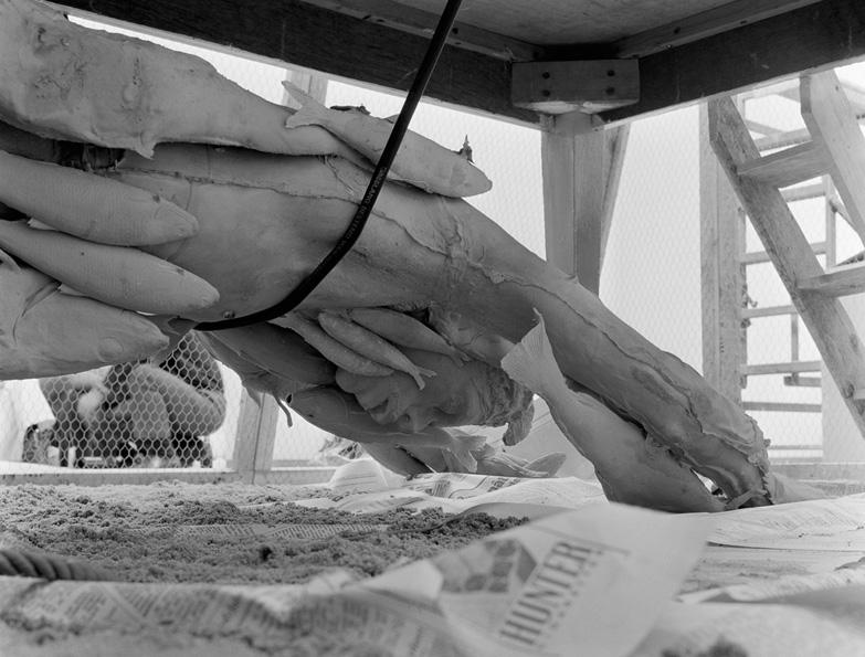 Paul Thek: A Fishman in Stedelijk Museum 1969