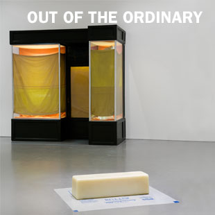 """Out of the Ordinary"" Installation Shot"