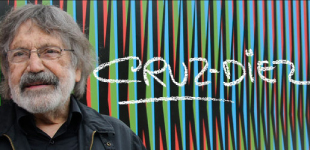 Carlos Cruz-Diez Website
