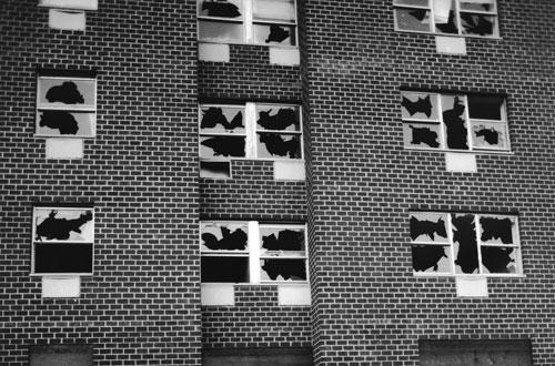 Gordon Matta-Clark, Window Blow-Out (detail), 1976. Generali Foundation Collection, Vienna.