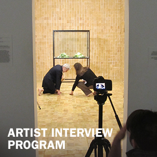Artist Interview Program