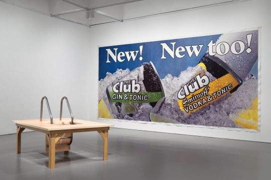Installation view of Brand New: Art and Commodity in the 1980s at the Hirshhorn Museum and Sculpture Garden, 2018. Left to right: Joan Wallace, The Pool Ladder Painting No 2, 2004; Jeff Koons, New! New Too!, 1983. Photo: Cathy Carver.