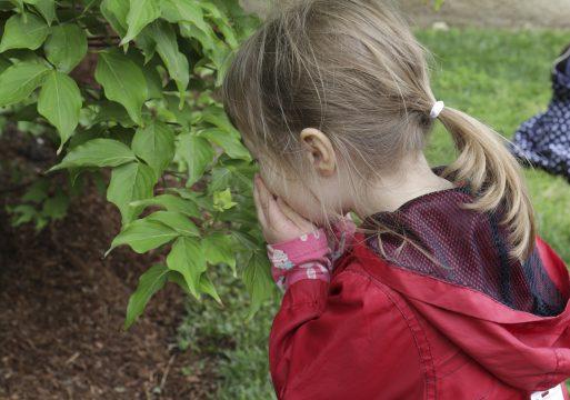 Child in sculpture garden