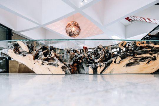 Lobby of the Hirshhorn Museum and Sculpture Garden. Artist: Hiroshi Sugimoto; Architect: NMRL/Tomoyuki Sakakida. Photo: Farrah Skeiky.