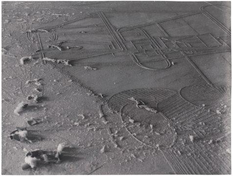 Marcel Duchamp and Man Ray Dust Breeding (Élevage de poussière), 1920/printed 1975 Gelatin silver photograph Edition: 2/8 Promised Gift of Barbara and Aaron Levine Hirshhorn Museum and Sculpture Garden, Washington, D.C.; photo: Cathy Carver © Association Marcel Duchamp / ADAGP, Paris / Artists Rights Society (ARS), New York 2019; © Man Ray 2015 Trust / Artists Rights Society (ARS), NY / ADAGP, Paris