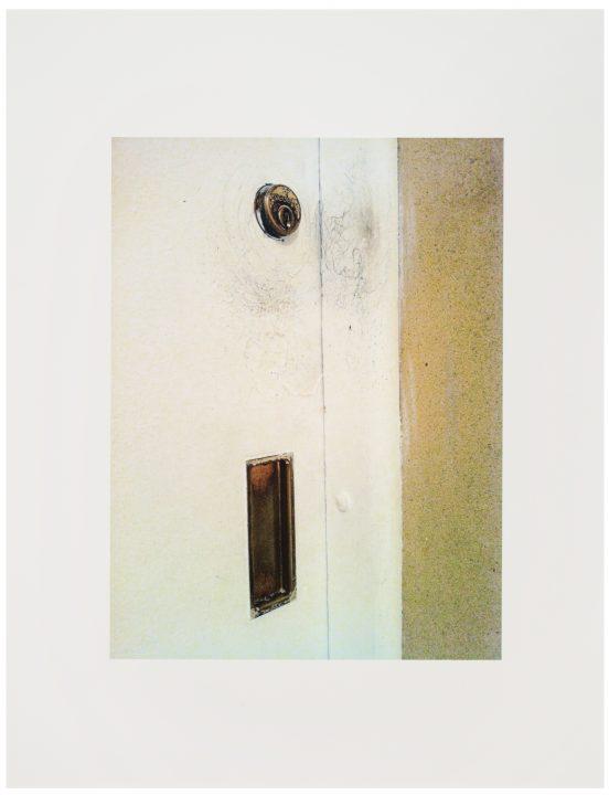 Image of Rachel Harrison's The Help Rachel Harrison's photograph The Help