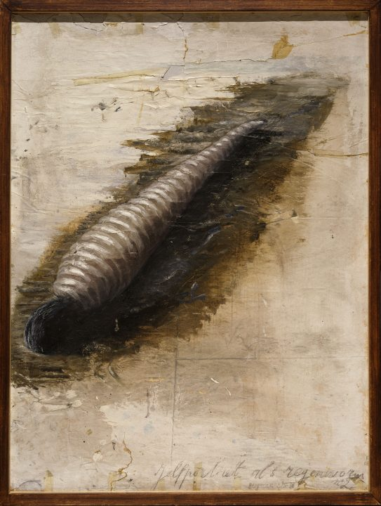 Painting of the artist's head on an earthworm's body lying face-down in the dirt