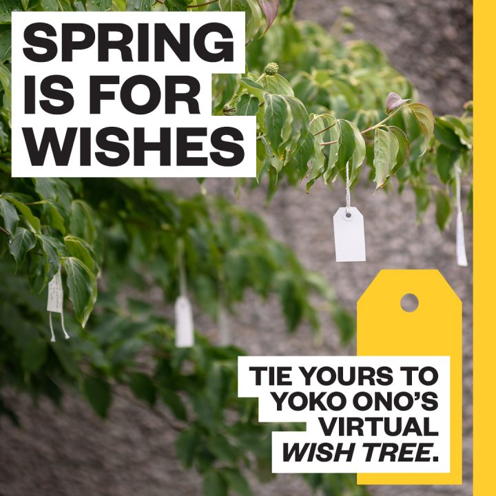 "Text reads ""Spring is for wishes. Tie Yours to Yoko Ono's Virtual Wish Tree."""
