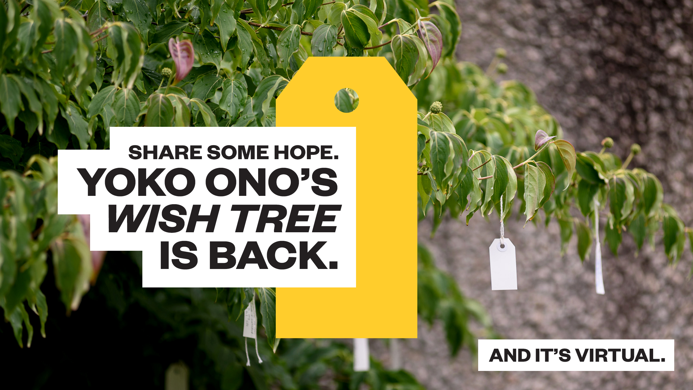"Text reads ""Share Some Hope. Yoko Ono's Wish Tree is Back. And It's Virtual"""