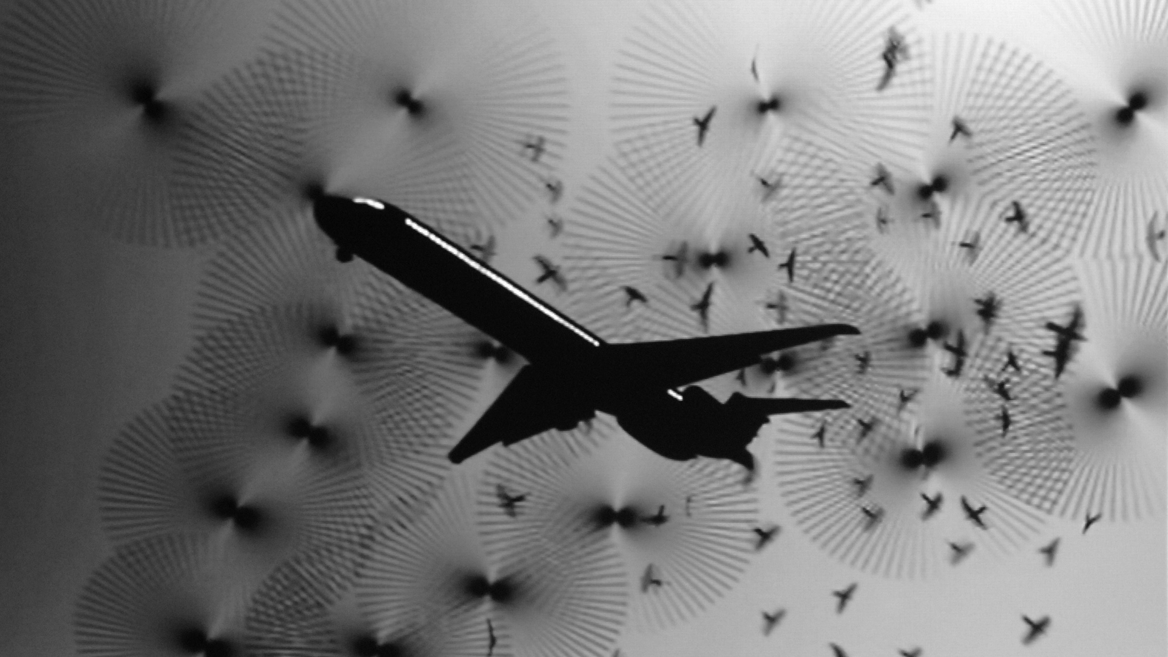 Black and white image of airplane with birds in the background