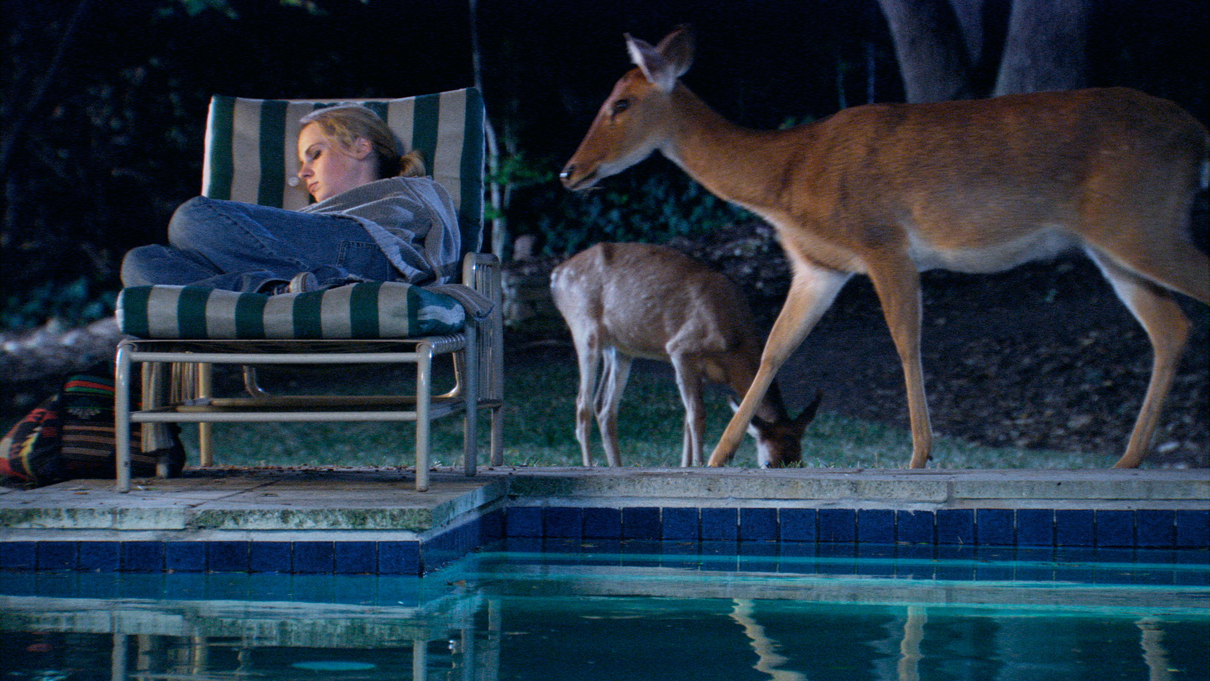 A woman is sleeping on a pool chair by the pool. Deer are walking next to her.
